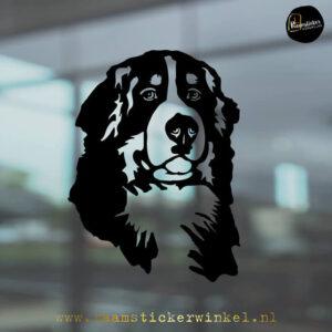 Raamsticker Berner sennen Amber RSW
