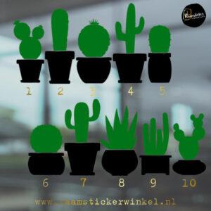 Raamsticker Cactus silhouet 2 kleuren zwart-groen